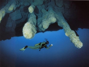 deep in the blue hole ~~~