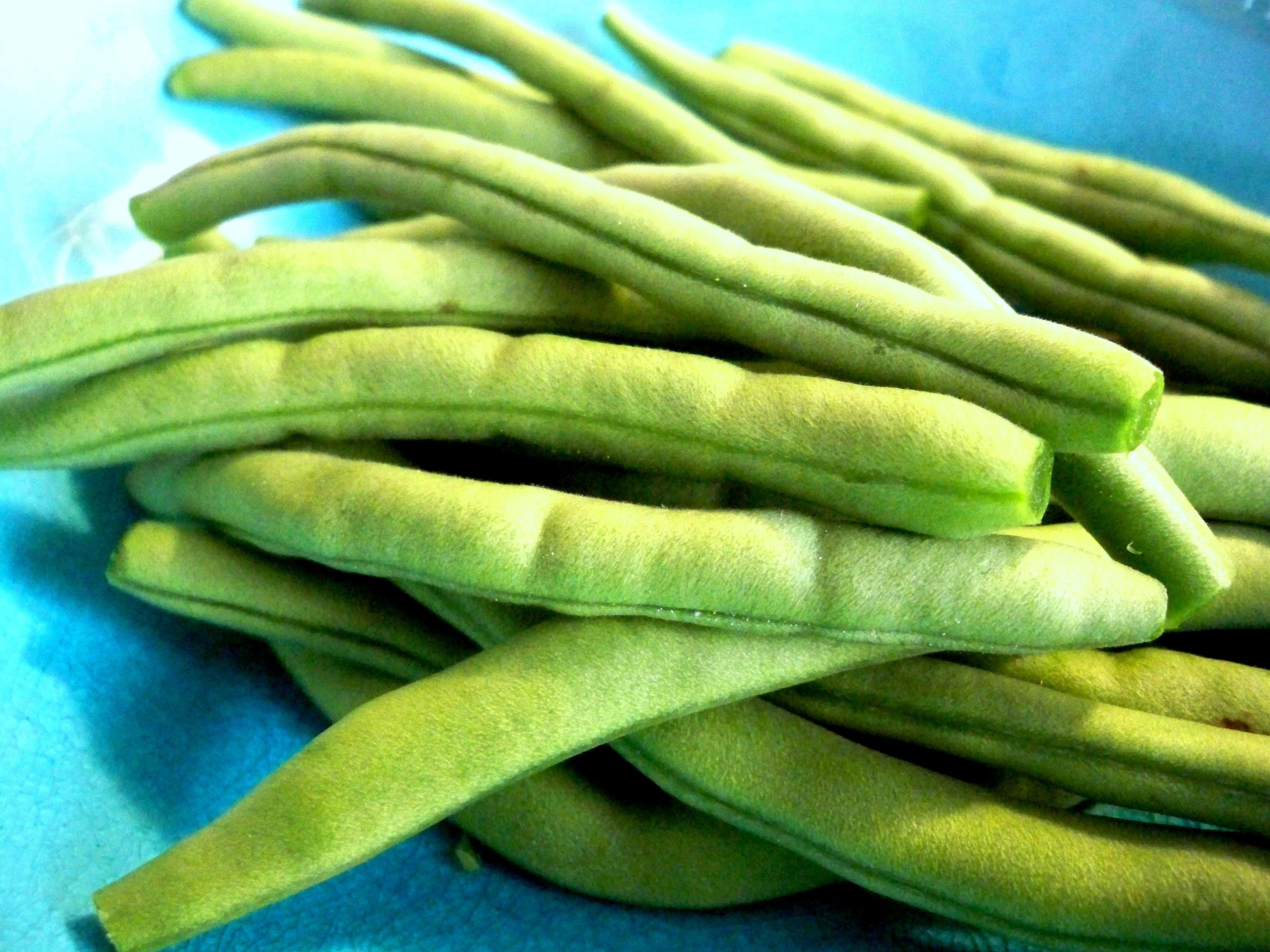 fried green beans ~ impromptu appetizer