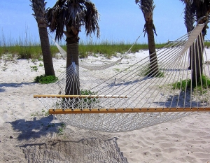Look ~~~ I found the hammocks!