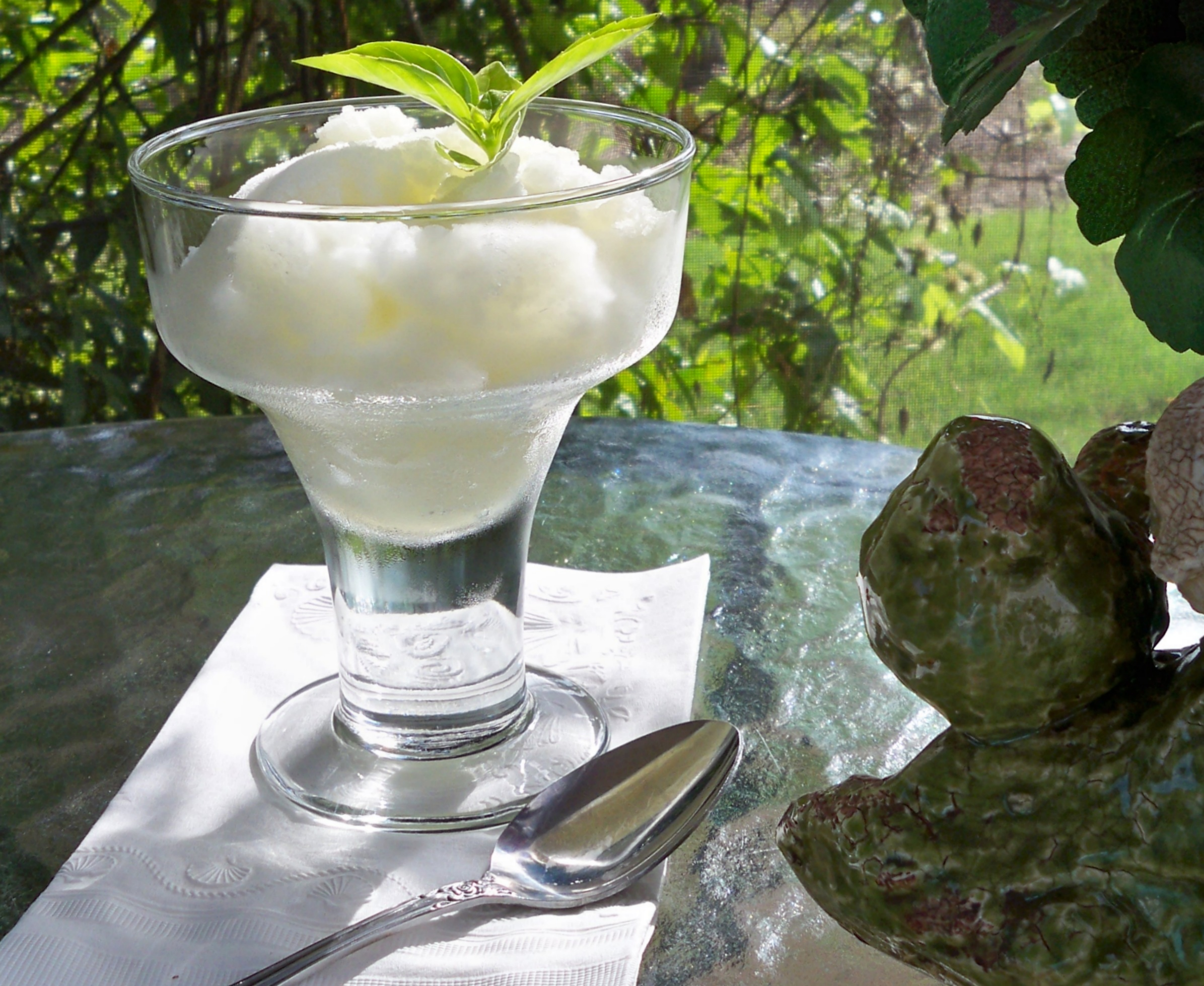 lemon basil sorbet on the back screened porch ~~~ ahhh!
