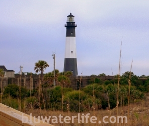 Tybee Lighthouse ~ signature landmark