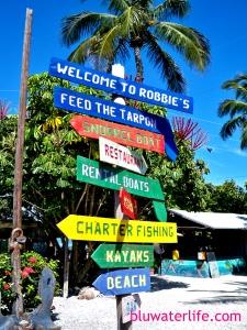 Robbie's Marina Islamorada