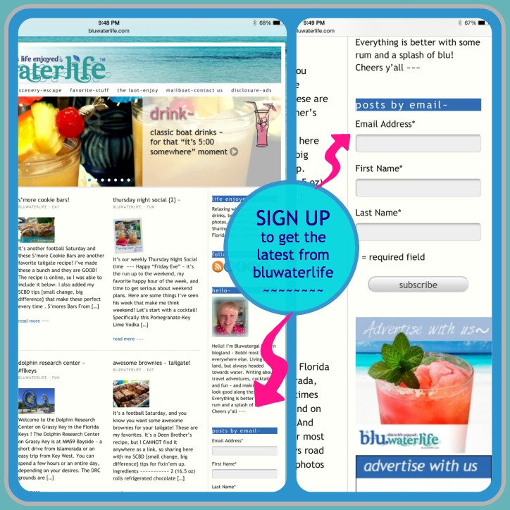 bluwaterlife email sign up