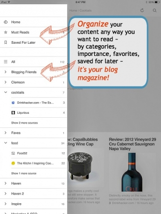 Blog Reader Infographic