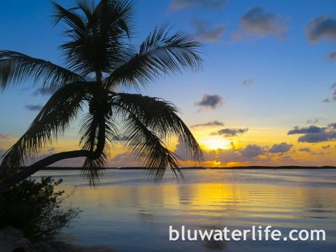 Islamorada Florida Keys-18