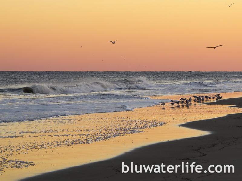 Tybee Island Sunset